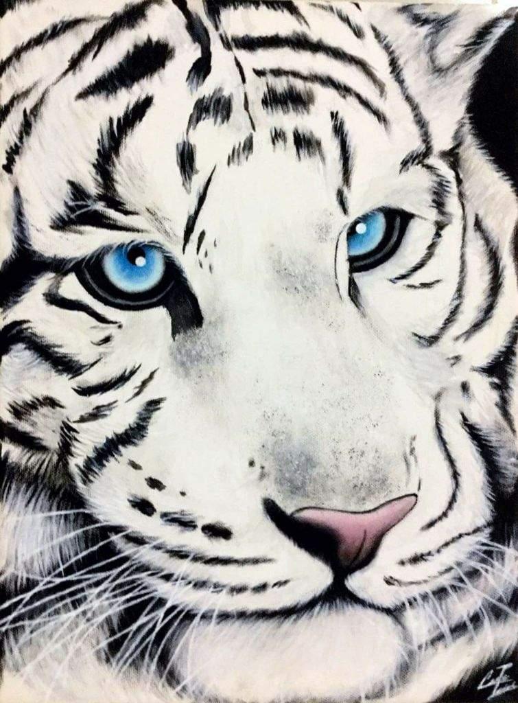 Dibujo De Un Tigre De Bengala Sobre Lienzo