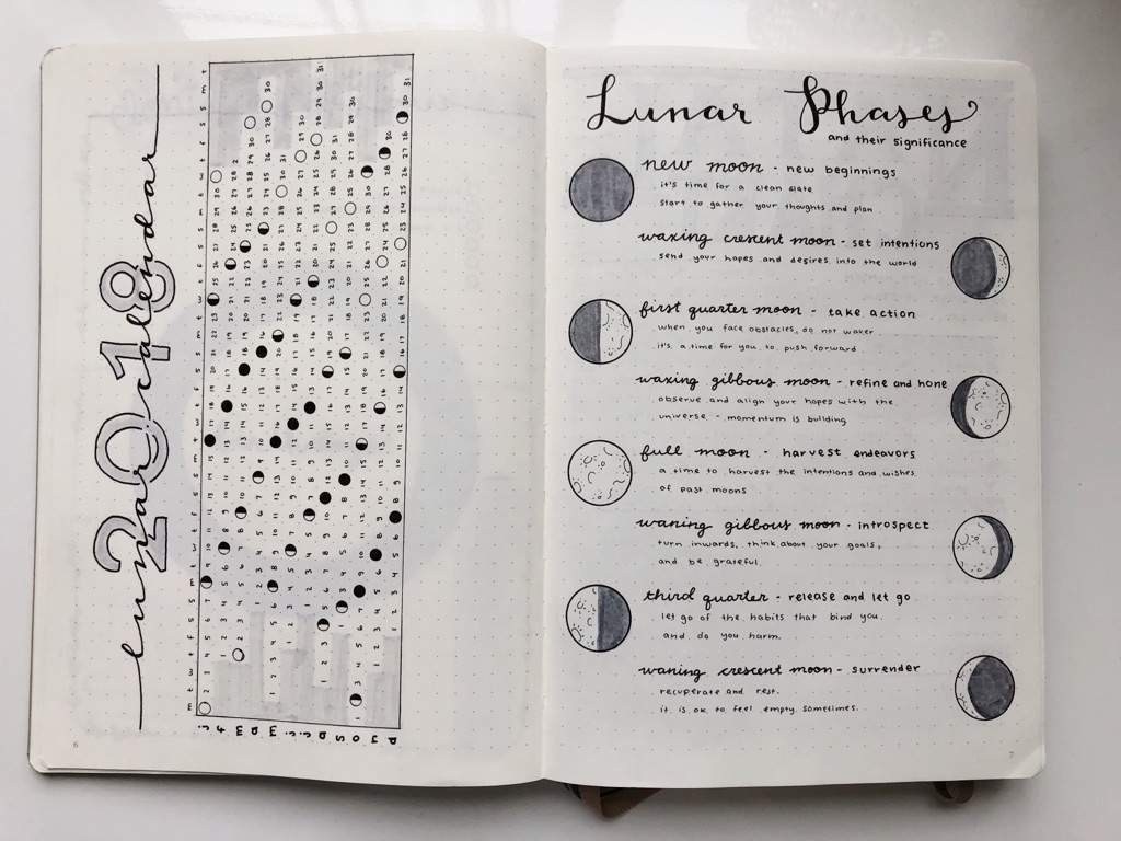 Mood Calendar Bullet Journal : Lunar calendar collections bullet journal amino