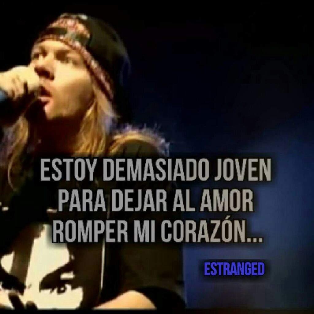 Algunas Frases De Guns N Roses Guns N Roses Amino Amino