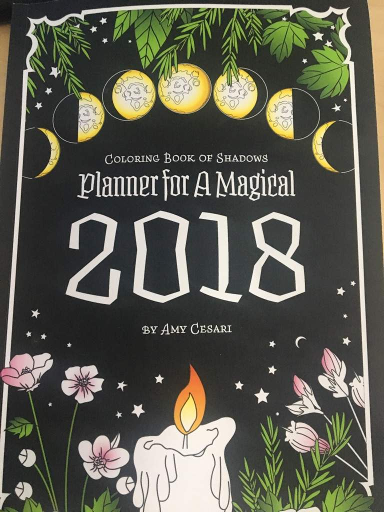 Book Review Coloring Book Of Shadows 2018 Planner Pagans