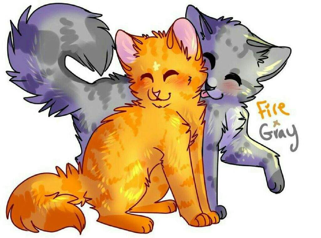 пары коты воители