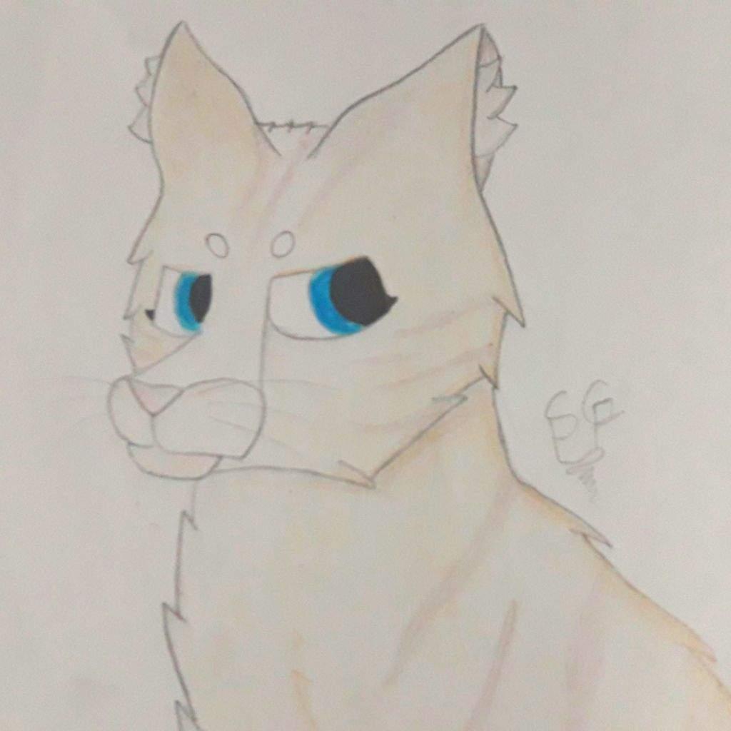 Primera entrega de Requests! (Headshots) | Los Gatos Guerreros ...