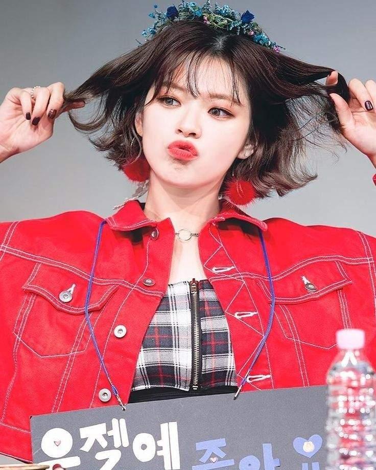 yoo jeongyeon wiki kpop idols reality amino