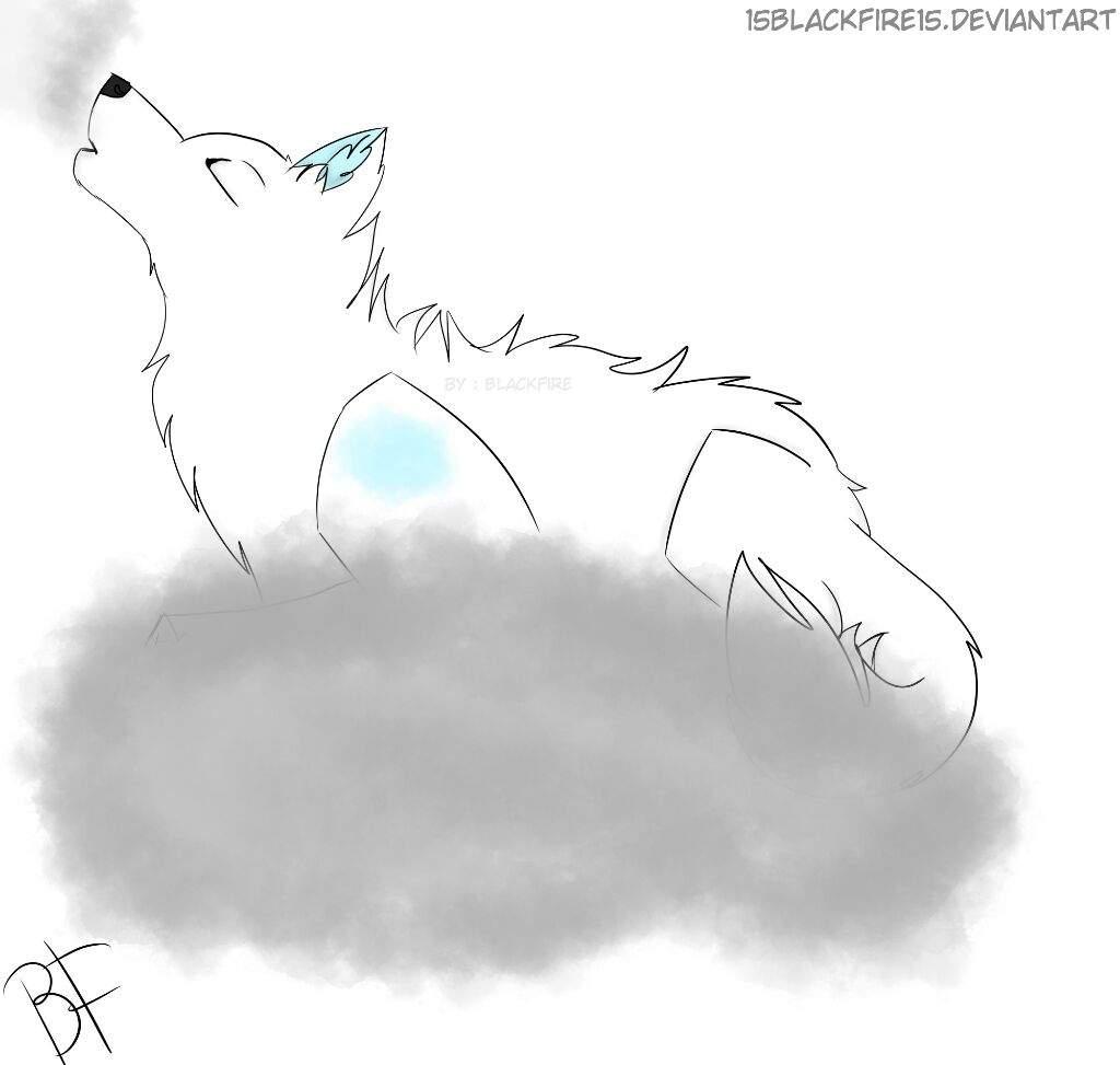 20 Elemental Wolf Challenge | Day 11 | Wolf Amino Amino