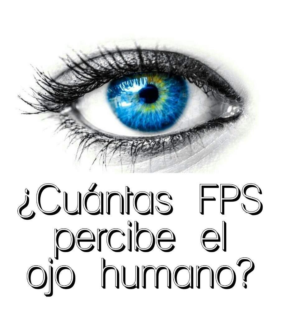 Cuántas FPS percibe el ojo humano? | Minecraft Amino • Crafters Amino