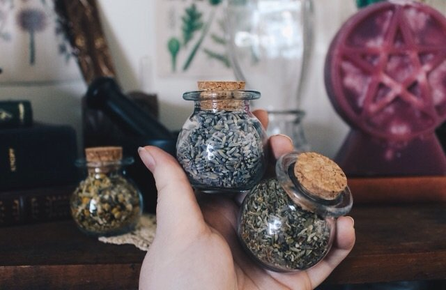 Hedge Witch Herb Kit | Pagans & Witches Amino