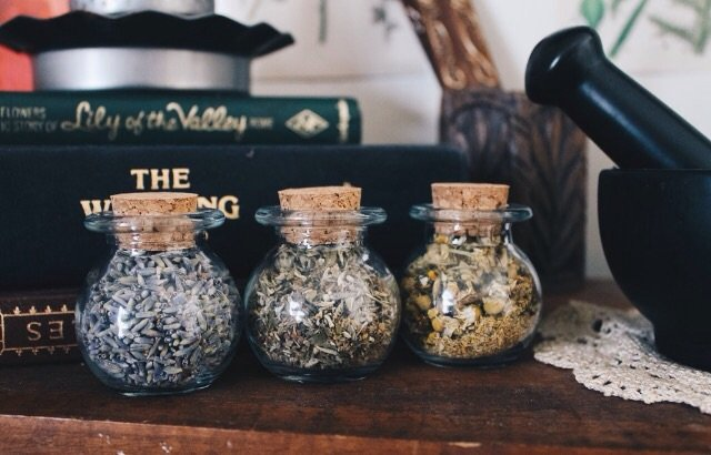 Hedge Witch Herb Kit | The Witches' Circle Amino