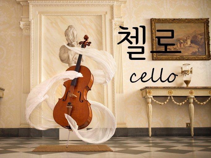 Vocab: Cello 첼로 | Korean Studies Amino