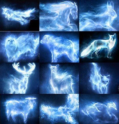 Patronus List Wiki Harry Potter Amino