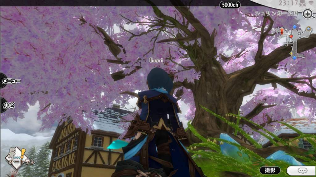 AlchemiaStory best Japanese IOS MMORPG so far? | Anime Amino