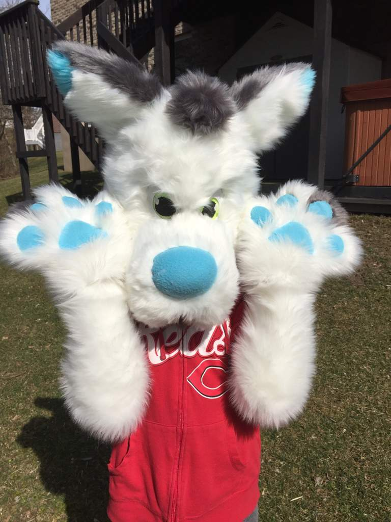 My Very First Fursuit! | Furry Amino