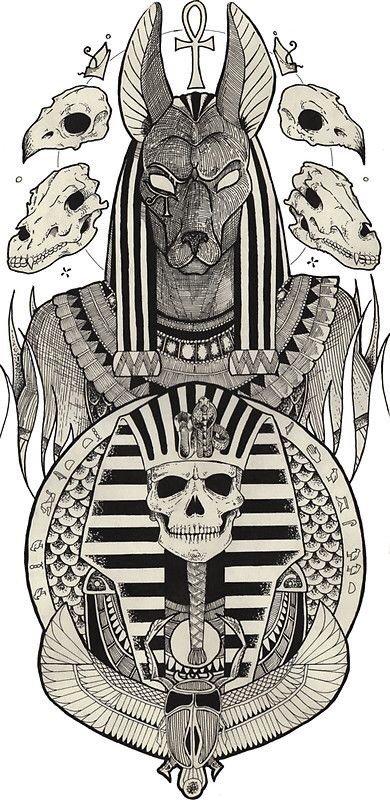 Anubis | 🐲 Hatchling Clan 🐉 Amino