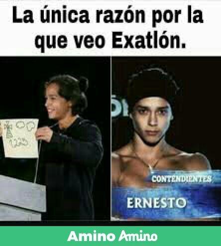 Memes Del Exatlon 3 Xd Exatlon Mexico Oficial Amino
