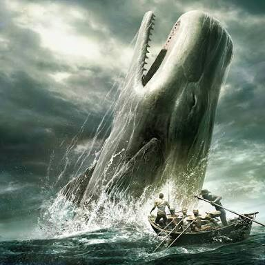 Megalodon vs Moby Dick | Battle Arena Amino Amino