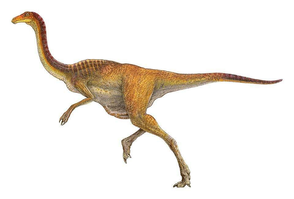 Lista De Ingen Parte 1 Nublar Jurassic Park Amino Amino Si te gustan los dinosaurios revisa estos tejidos originales en oferta. lista de ingen parte 1 nublar