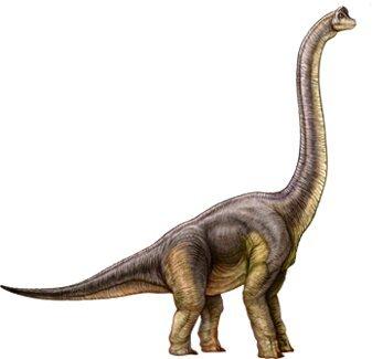 Lista De Ingen Parte 1 Nublar Jurassic Park Amino Amino Echa un vistazo a nuestra enciclopedia. lista de ingen parte 1 nublar