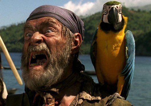 Cotton's Parrot | Wiki | Pirates of the Caribbean Amino