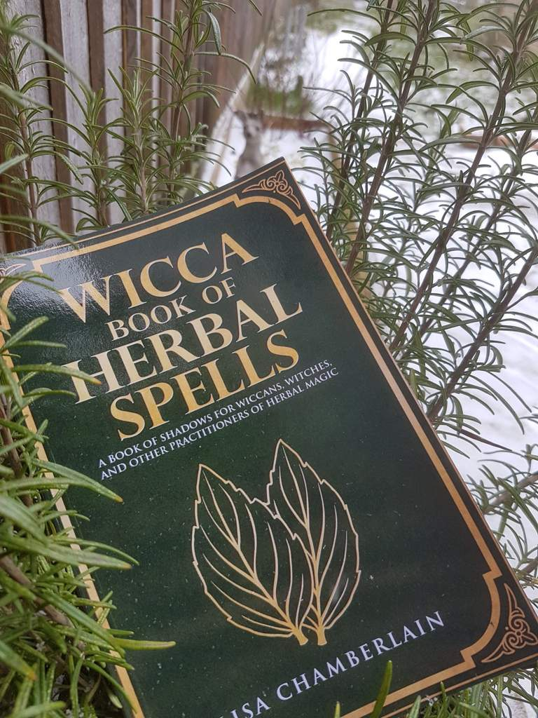 Book Review: Wicca: Book of Herbal Spells | Pagans & Witches