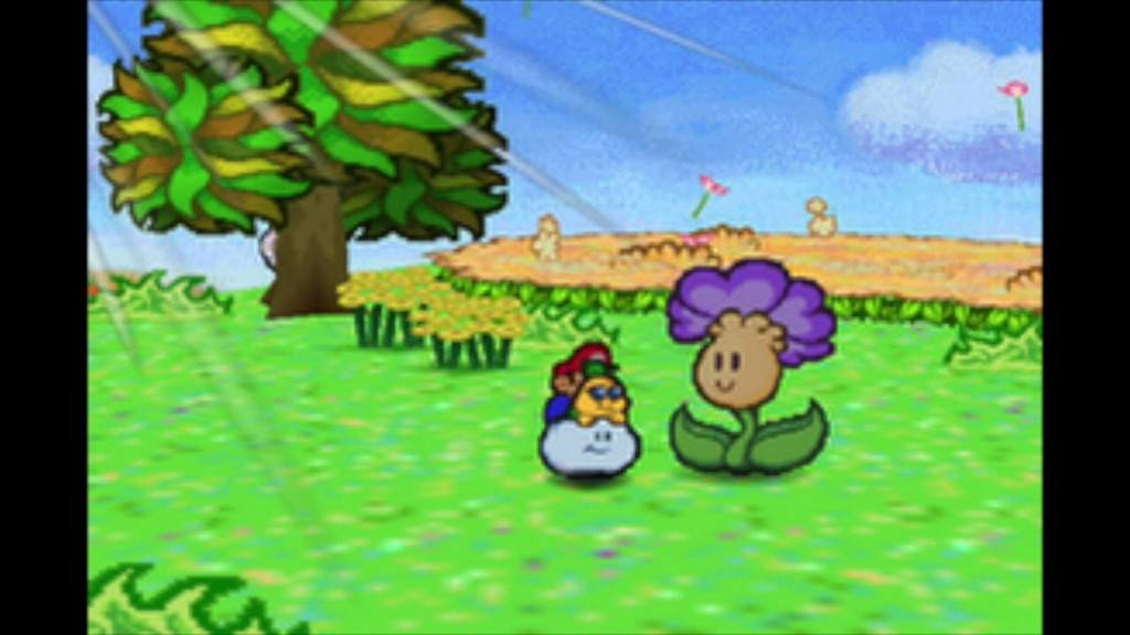 Ranking The Flowers In Flower Fields Paper Mario Amino