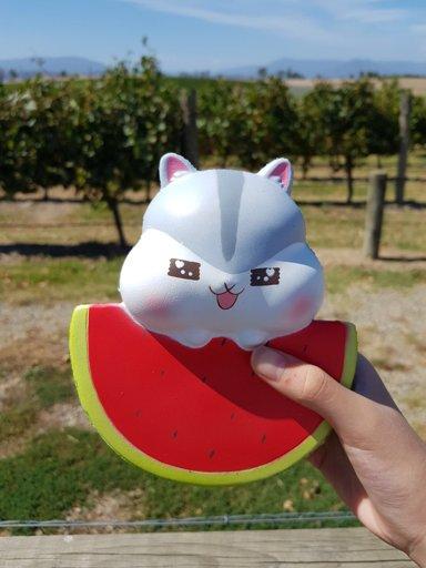 Squishy Haul Blog : Biggest Squishy ever Squishy Love Amino