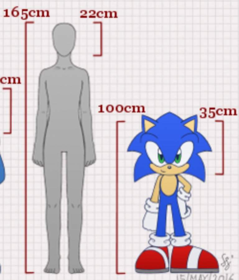 Why Are Sonic Characters So Small And Short Sonic The Hedgehog Amino
