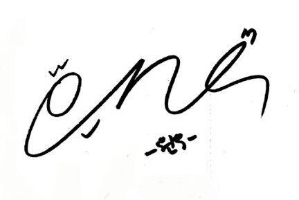 Thoughts on Seventeen's Signatures | Carat ❲캐럿❳ Amino