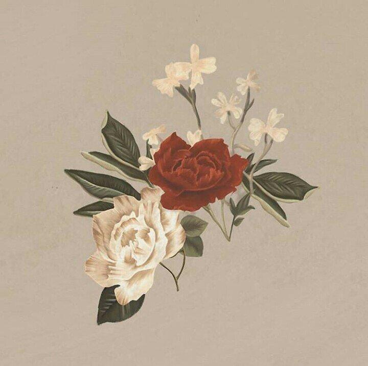 Flower Drawing App: Shawn Mendes Brasil🇧🇷 Amino