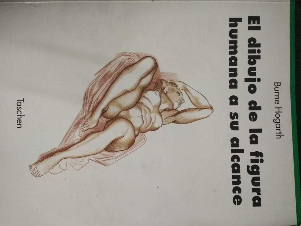 Contemporáneo Dibujos De Anatomía Grises Elaboración - Dibujos de ...