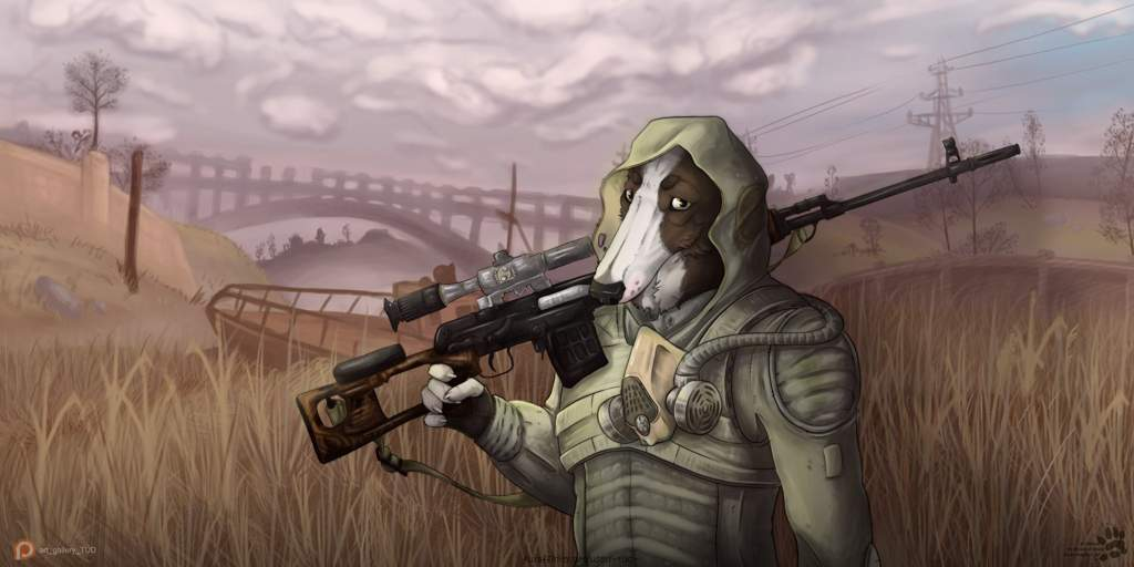 Картинка сталкер с собакой