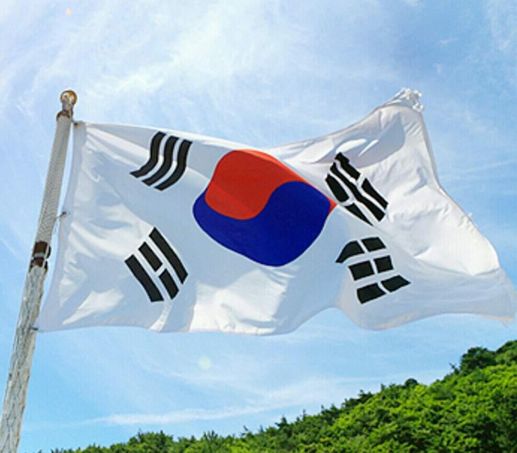 тех корея флаг фото понравилось передали, потратив