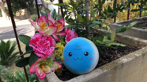 Squishy Haul Blog : GALAXY UNICORN! Squishy Love Amino