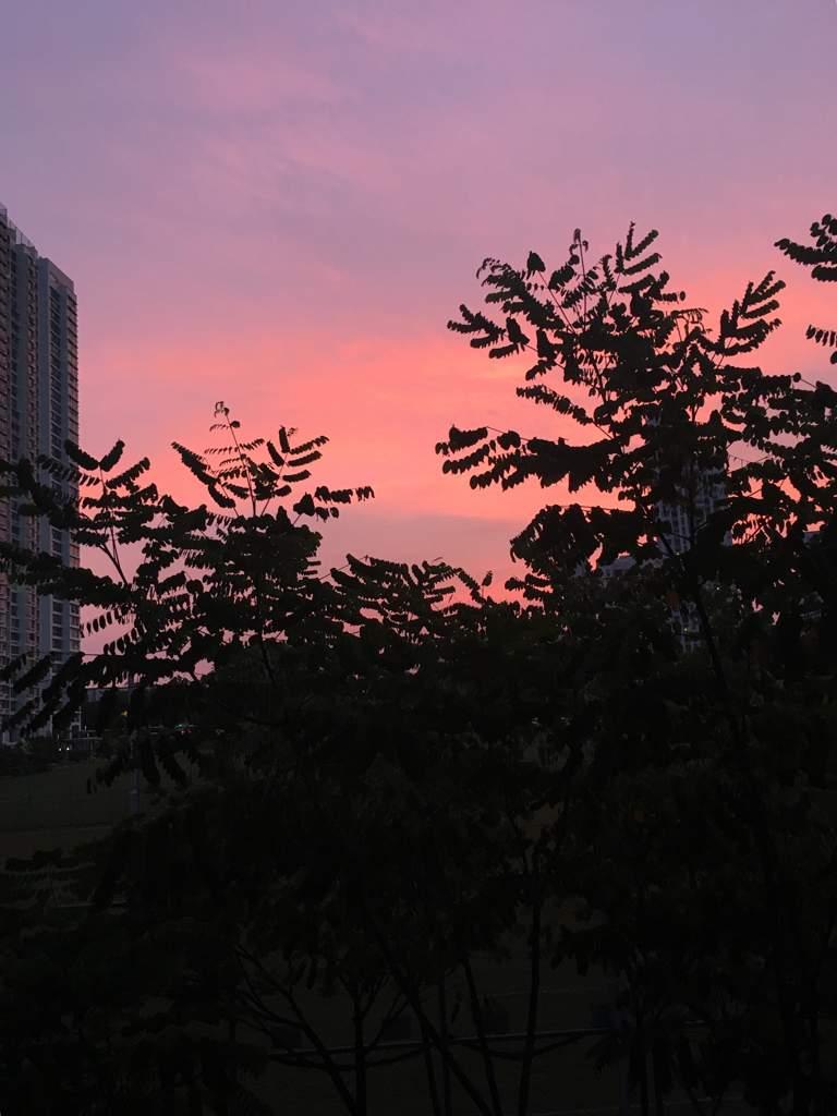 A Pretty Rose Quartz And Serenity Sky Carat 캐럿 Amino
