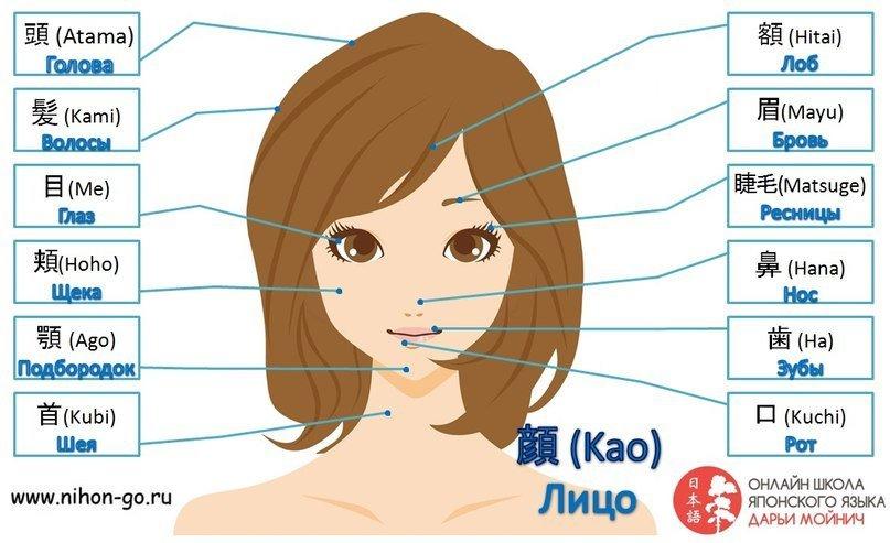 Японский для детей с картинками