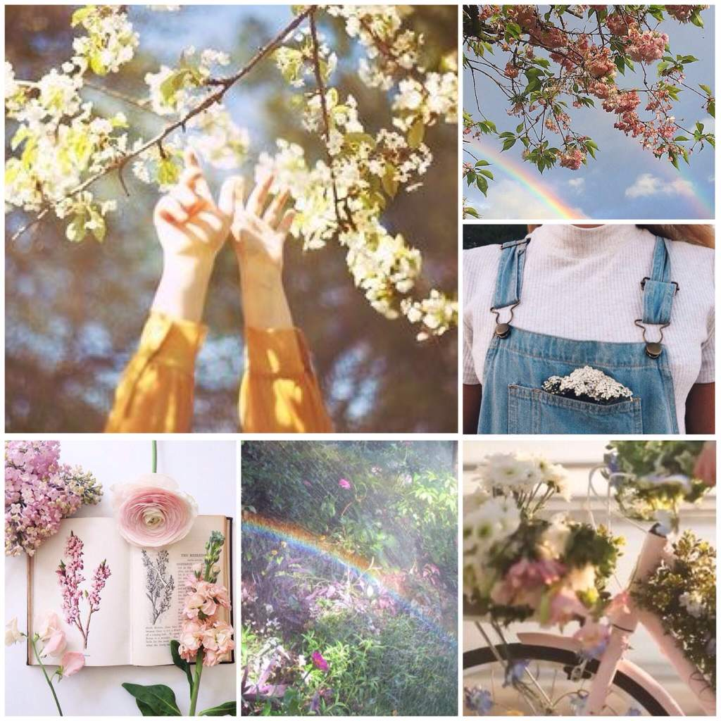 Spring Aesthetics🌻🌷 | Official Aesthetic Amino