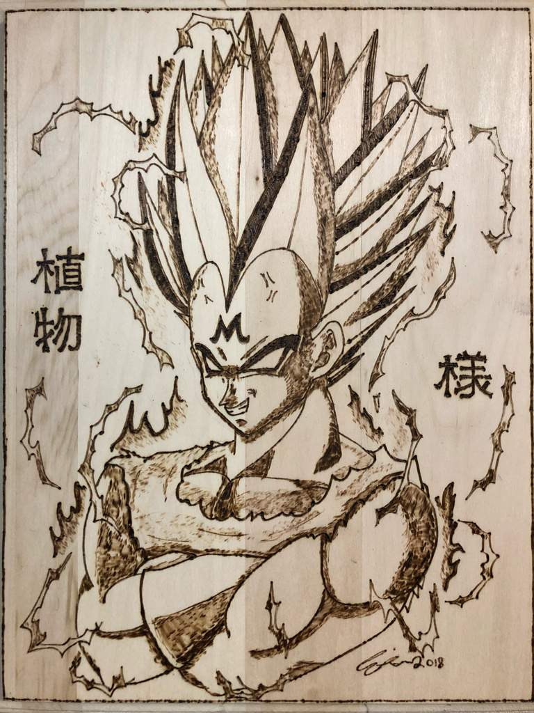 Majin Vegeta Wood Burning Dragonballz Amino