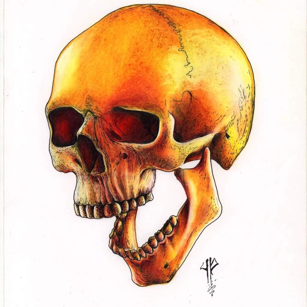 Dibujo Con Lapices De Color Prismacolor Que Les Parece Skull