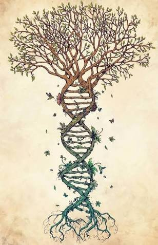 Резултат с изображение за tree of life dna