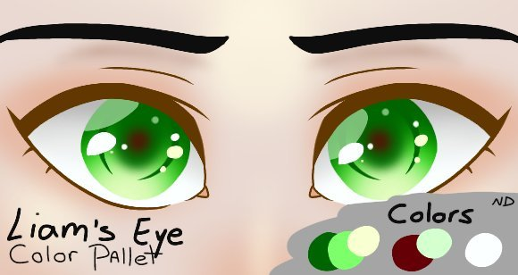 Liams Eye Color Reference Sheet