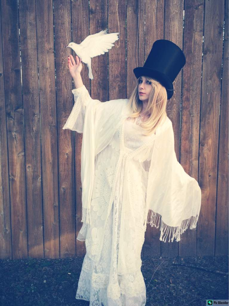 Iu0027ve wanted to cosplay Stevie Nicks since I was a little girl and doing it made me feel so good. I hope I brought this legend justice.  sc 1 st  Amino Apps & Stevie Nicks cosplay | Cosplay Amino