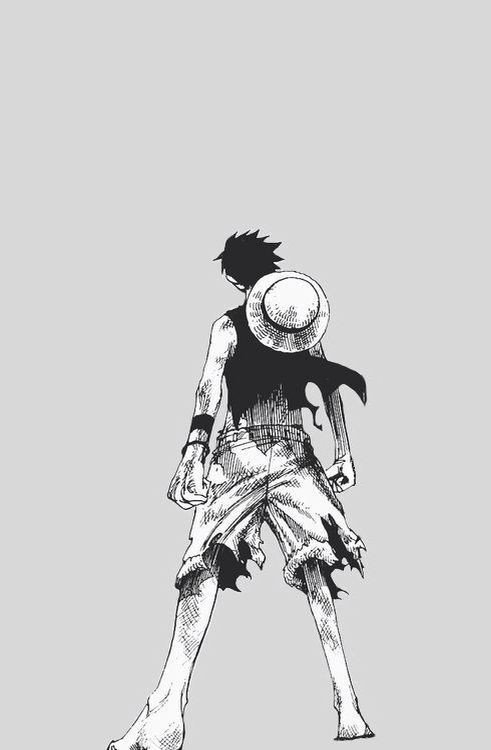 Luffy Wallpapers One Piece Amino