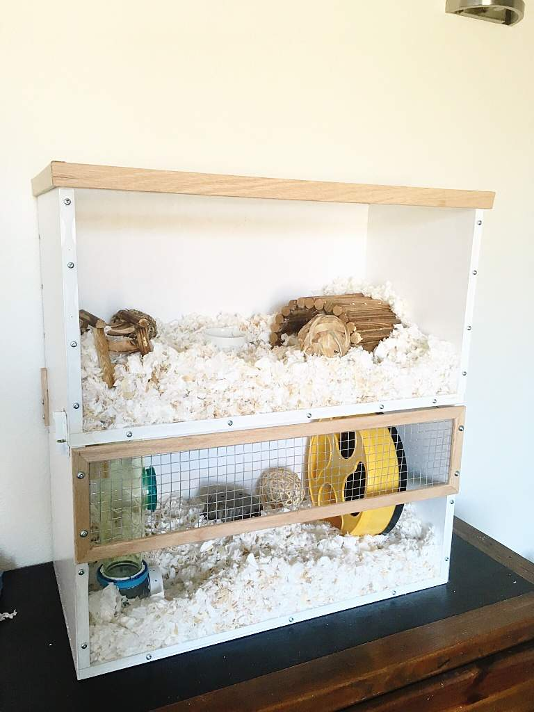 Hamster Cage Diy Crafty Amino