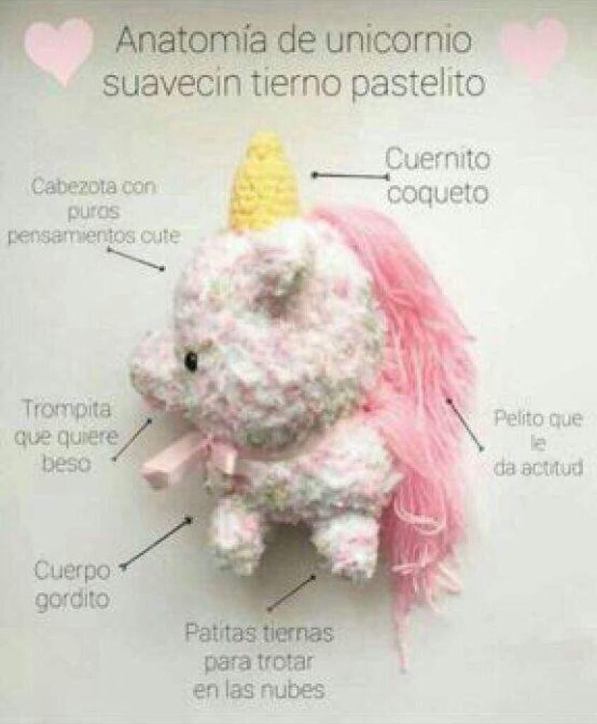 🦄 top 10 curiocidades de los unicornios 🦄 | •Solo Chicas• Amino