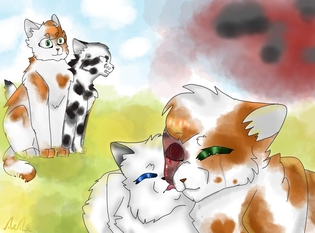 Смотреть картинки коты воители яролика