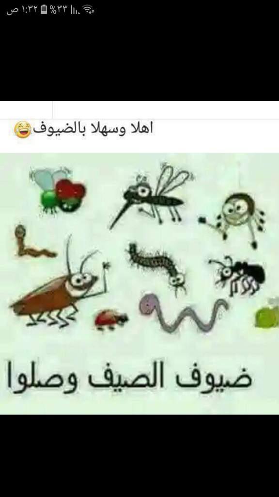 أهلا وسهلا شرفونا حبابنا مجاني Mp3