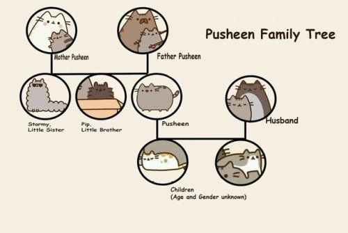 I Found Some Photos Online Of Pusheens Fam And Wanted To Show Someone So Why Not You All Stuck Out Tongue Closed Eyes