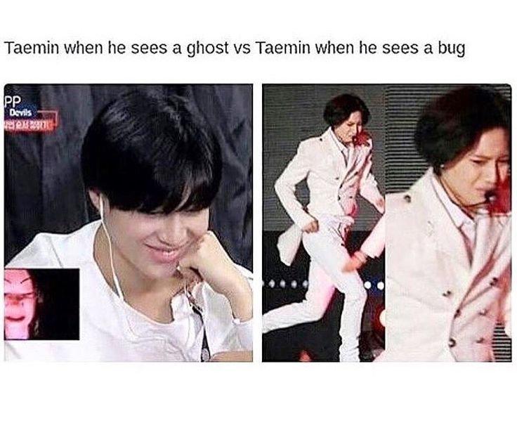 A Taemin Meme 5hinee 샤이니 Amino