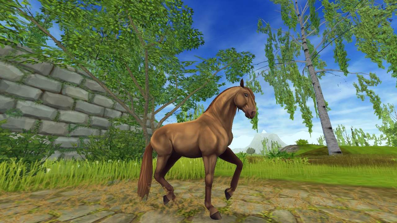 Quizzes   Star Stable Online Amino
