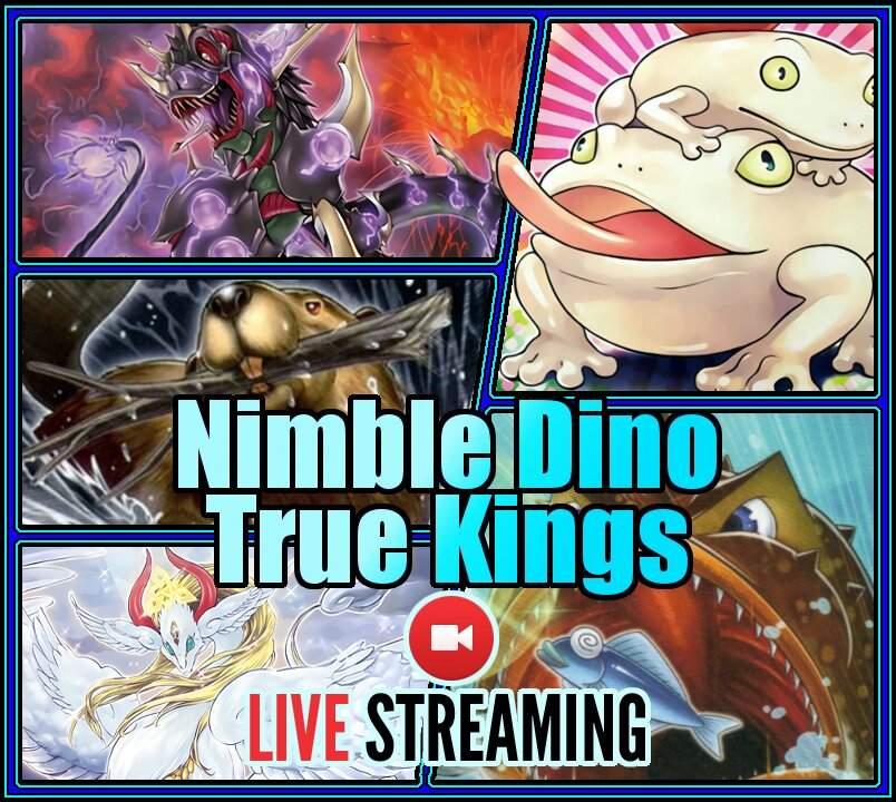 Live Streaming   Nimble Dinosaur True King Frogs   Duel Amino