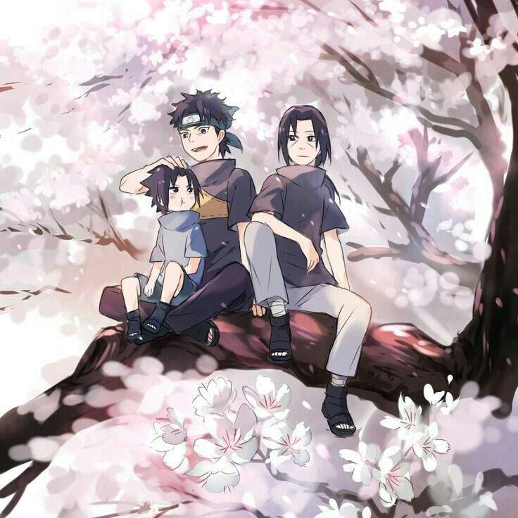 Naruto Shippuden | Wiki | Next Generation Naruto Amino