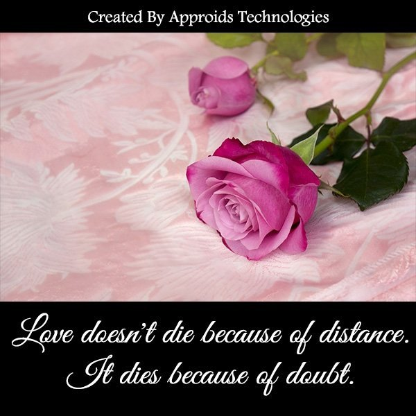 What is difference between love and affection